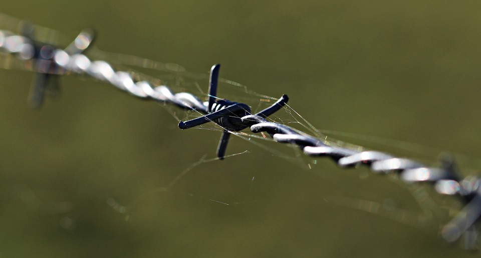 barbed wire 1785533 960 720