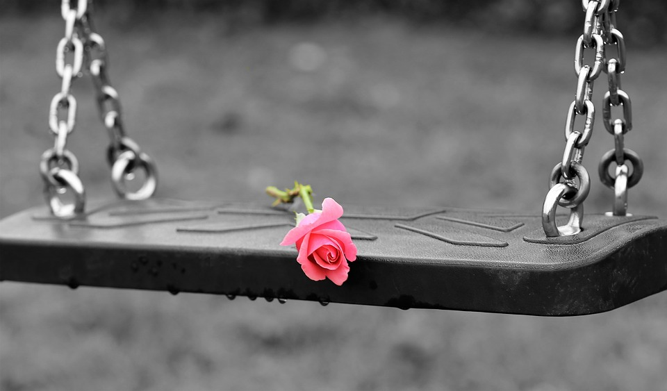 pink rose on empty swing 3656894 960 720